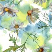 chamomiles, zöld levelek akvarell illusztráció, varratmentes háttérben minta