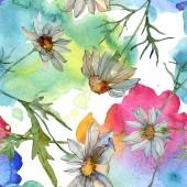 Chamomiles zelenou barvou listí akvarel ilustrace, vzor bezešvé pozadí