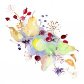 Kytice s květy a plody. Divoký jarní listové wildflower izolován. Sada akvarel pozadí obrázku. Akvarel výkresu módní aquarelle. Prvek ilustrace izolované kytice