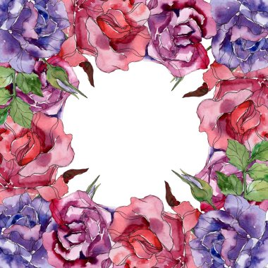 Purple and red rose floral botanical flowers. Wild spring leaf wildflower isolated. Watercolor background illustration set. Watercolour drawing fashion aquarelle. Frame border ornament square.