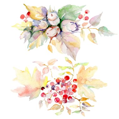 Bouquet of autumn forest fruits. Wild spring leaf isolated. Watercolor background illustration set. Watercolour drawing fashion aquarelle. Isolated bouquet illustration element. stock vector