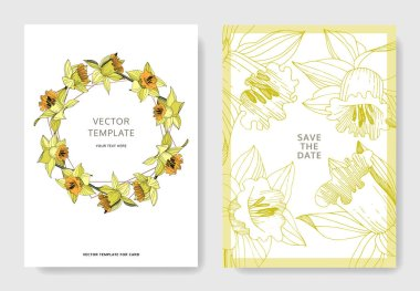Vector Yellow Narcissus floral botanical flower. Engraved ink art. Wedding background card floral decorative border. Elegant card illustration graphic set banner. clip art vector
