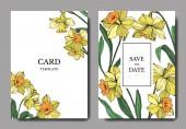 Fotografie Vektorové žlutý Narcis květinové botanické květin. Divoký jarní listové izolované. Ryté inkoust umění. Svatební pozadí karty květinové ozdobný okraj. Grafická ilustrace elegantní karty sada nápis