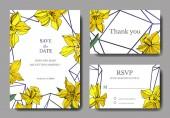 Vektor sárga nárcisz virág botanikai virág. Vad tavaszi levél elszigetelt. Vésett tinta art. Esküvői háttér kártya virágos dekoratív határok. Elegáns kártyával ábrán grafikus banner beállítása.
