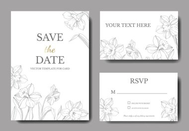 Vector Narcissus floral flower. Wild spring leaf isolated. Black and white engraved ink art. Wedding background card floral decorative border. Elegant card illustration graphic set banner. clip art vector