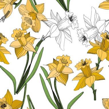 Vektör sarı nergis botanik çiçek. Vahşi bahar yaprak izole kır çiçeği. Oyulmuş mürekkep sanat. Sorunsuz arka plan deseni. Kumaş duvar kağıdı yazdırma doku.