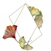 grün rot Ginkgo biloba Blätter. Aquarell Hintergrund Illustrationsset. Rahmen Rand Ornament Quadrat.