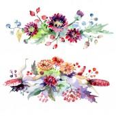 Kytice s květy a plody. Sada akvarel pozadí obrázku. Prvek ilustrace izolované kytice.