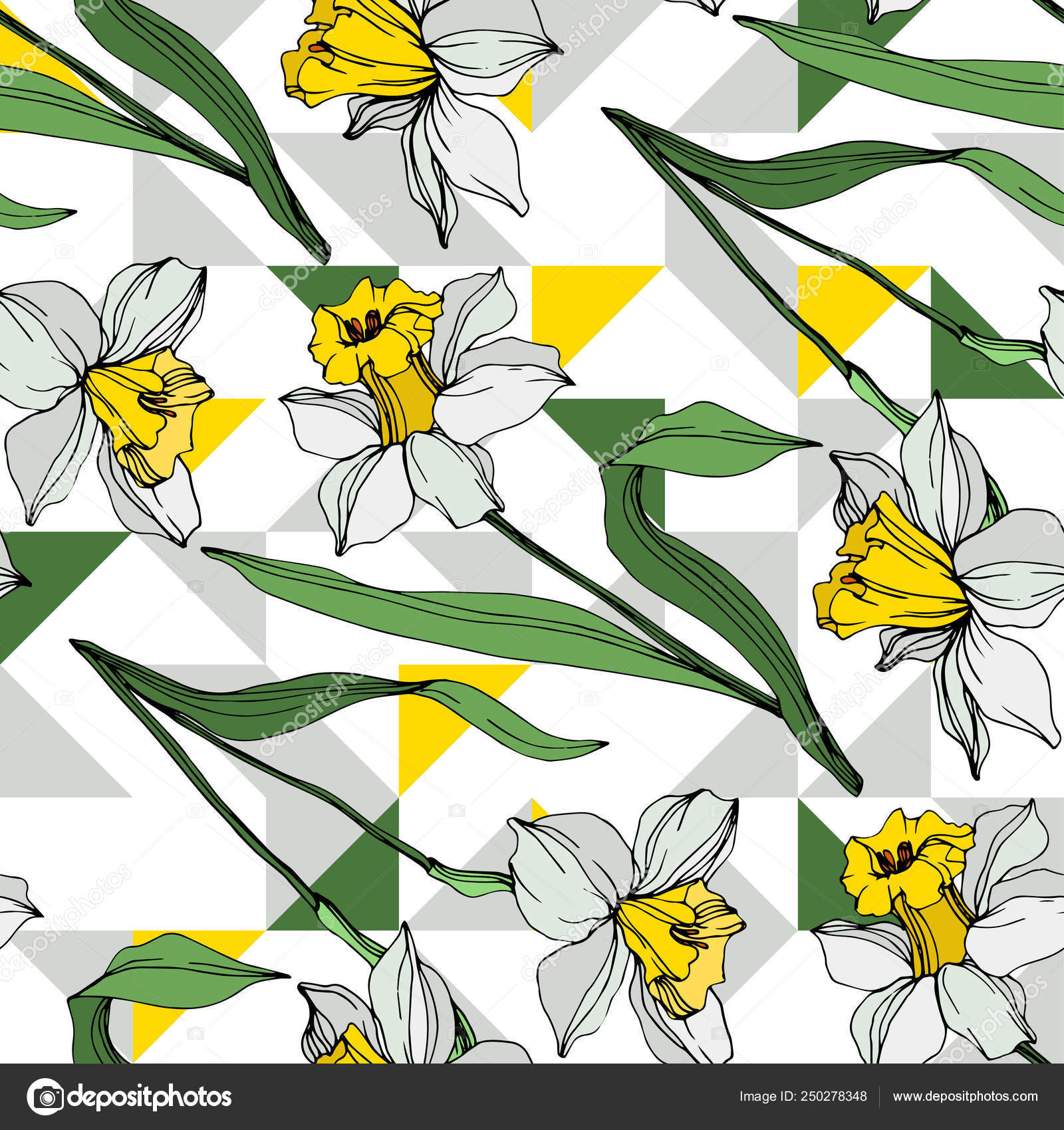 Vector White Yellow Narcissus Flowers Green Leaves Engraved Ink Art