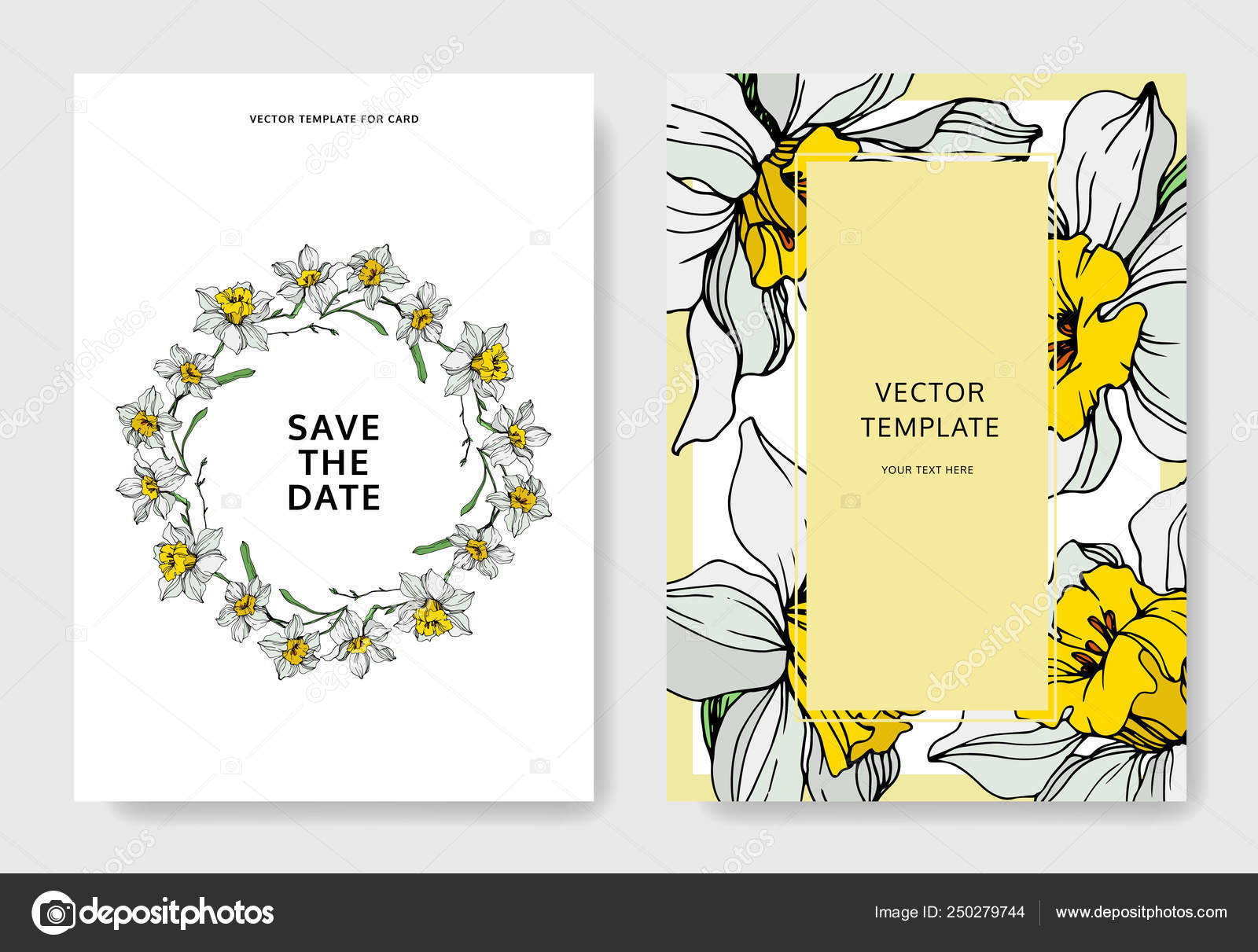 Vector Elegant Wedding Invitation Cards White Narcissus