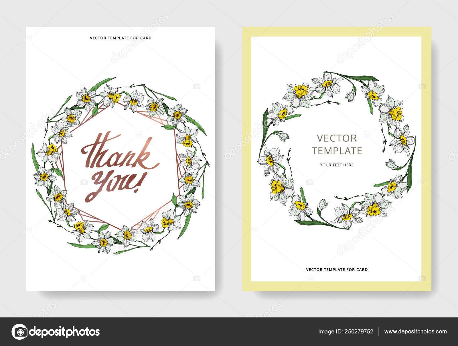 Vector Elegant Wedding Invitation Cards White Narcissus