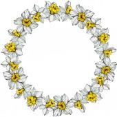 Vektor fehér nárcisz virág, zöld levelekkel. Vésett tinta art fehér háttér. Test határ dísz a másol hely.