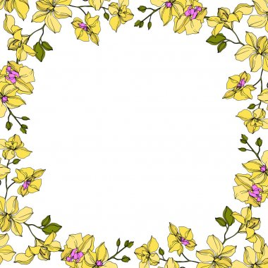 Background with vector wreath of yellow orchid flowers isolated on white with copy space clip art vector