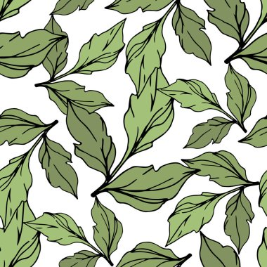 Green vector leaves isolated on white. Engraved ink art. Seamless background pattern. stock vector