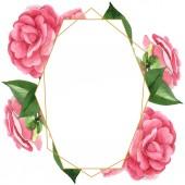 Růžové velbloudé květy se zelenými listy izolované na bílém. Vodný obrázek pozadí-barevný. Prázdný rámeček s prostorem pro kopírování.