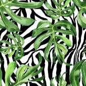 Egzotikus trópusi Hawaii zöld pálmalevél. Akvarell háttér meg. Folytonos háttérmintázat.