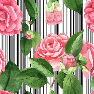 Pink camellia flowers with green leaves on white background with black lines. Watercolor illustration set. Seamless background pattern. stock vector