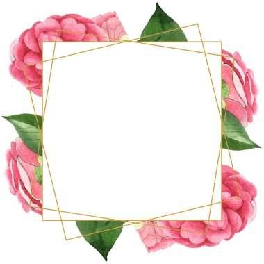 Pink camellia flowers with green leaves isolated on white. Watercolor background illustration set. Empty frame with copy space. stock vector