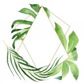 exotische tropische hawaiianische grüne Palmenblätter isoliert auf weiß. Aquarell Hintergrund Set vorhanden. Rahmen mit Kopierraum.
