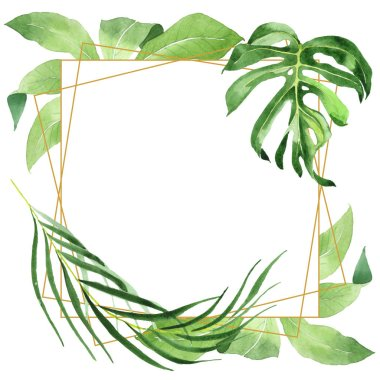 Exotic tropical hawaiian green palm leaves isolated on white. Watercolor background set. Frame with copy space. stock vector