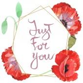 Červené makky izolované na bílém. Vodný obrázek pozadí-barevný. Rámeček s květinami a jen pro vás.