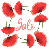 Červené makky izolované na bílém. Vodný obrázek pozadí-barevný. Rám s květinami a nápisy pro prodej.