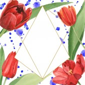 Fotografie Red tulips with green leaves illustration isolated on white. Frame ornament with blue paint spills and copy space.