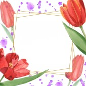 Red tulips with green leaves illustration isolated on white. Frame ornament with purple paint spills and copy space.