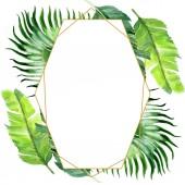 exotische tropische hawaiianische Palmenblätter isoliert auf weiß. Aquarell Hintergrundillustration Set. Rahmenornament mit Kopierraum.