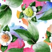 Bílé kamélie květiny se zelenými listy akvarel ilustrační set. Bezproblémové pozadí vzor.