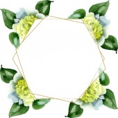 Fényképek White camellia flowers with green leaves isolated on white. Watercolor background illustration set. Frame border ornament with copy space.