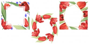 Wreaths of red tulips with green leaves illustration isolated on white. Frame ornaments with copy space. stock vector