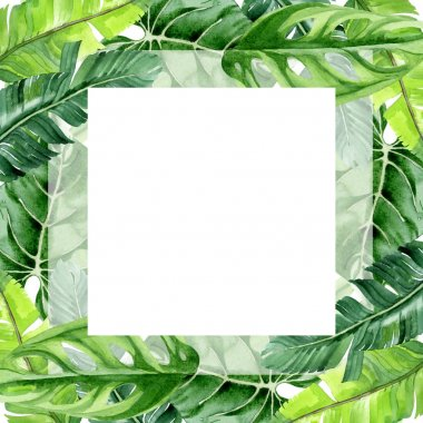 Exotic tropical hawaiian palm tree leaves isolated on white. Watercolor background illustration set. Frame ornament with copy space. stock vector