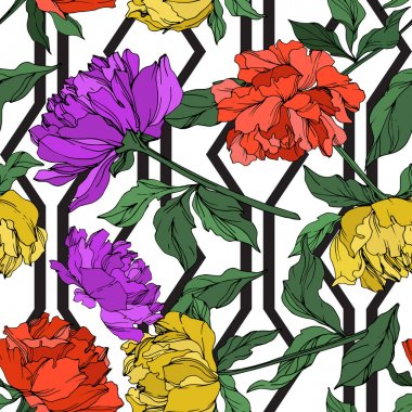 Vector multicolored peonies with leaves isolated on white. Seamless background pattern. clip art vector