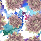 Succulent floral botanical flower. Wild spring leaf wildflower. Watercolor illustration set. Watercolour drawing fashion aquarelle. Seamless background pattern. Fabric wallpaper print texture.