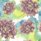 Šťavnaté květinové květiny. Divoké květinové listy. Akvarel na obrázku. Akvarel na kreslicím módu. Bezespání vzorek pozadí. Textura pro tisk tapety.