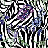 Fényképek Lila levendula virágos botanikus virág. Akvarell háttér illusztráció meg. Folytonos háttérmintázat.