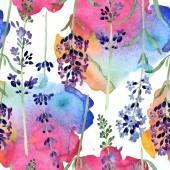 Fialová levandule květinová Botanická květina. Vodný obrázek pozadí-barevný. Bezespání vzorek pozadí.