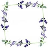 Lila levendula virágos botanikus virág. Akvarell háttér illusztráció meg. Keretszegély Dísz tér.