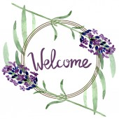Fialová levandule květinová Botanická květina. Vodný obrázek pozadí-barevný. Orámovaná hranatá hranice.