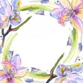 Orchidea virág botanikai virágok. Akvarell háttér illusztráció meg. Keretszegély Dísz tér.