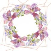 Květinové botanické květiny. Vodný obrázek pozadí-barevný. Orámovaná hranatá hranice.