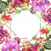 Orchidea virág botanikus virág. Akvarell háttér illusztráció meg. Keretszegély Dísz tér.