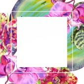 Botanická květina orchidejí. Vodný obrázek pozadí-barevný. Orámovaná hranatá hranice.