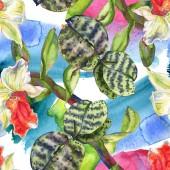 Botanická květina orchidejí. Vodný obrázek pozadí-barevný. Bezespání vzorek pozadí.