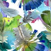 Madártoll szárnya izolált. Akvarell háttér illusztráció meg. Folytonos háttérmintázat.