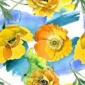 Fényképek Sárga pipacs virágos botanikai virágok. Akvarell háttér illusztráció meg. Folytonos háttérmintázat.