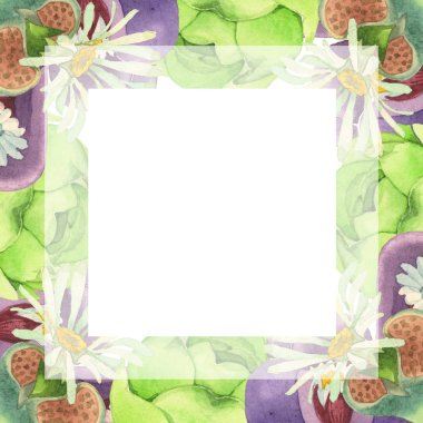 Succulent floral botanical flower. Wild spring leaf wildflower isolated. Watercolor background illustration set. Watercolour drawing fashion aquarelle isolated. Frame border ornament square. stock vector