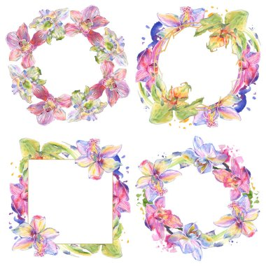 Orchid floral botanical flowers. Wild spring leaf wildflower isolated. Watercolor background illustration set. Watercolour drawing fashion aquarelle isolated. Frame border ornament square. stock vector