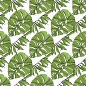 Palm beach tree leaves jungle botanical succulent. Black and green engraved ink art. Seamless background pattern.